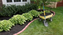 Mulching and Garden Care
